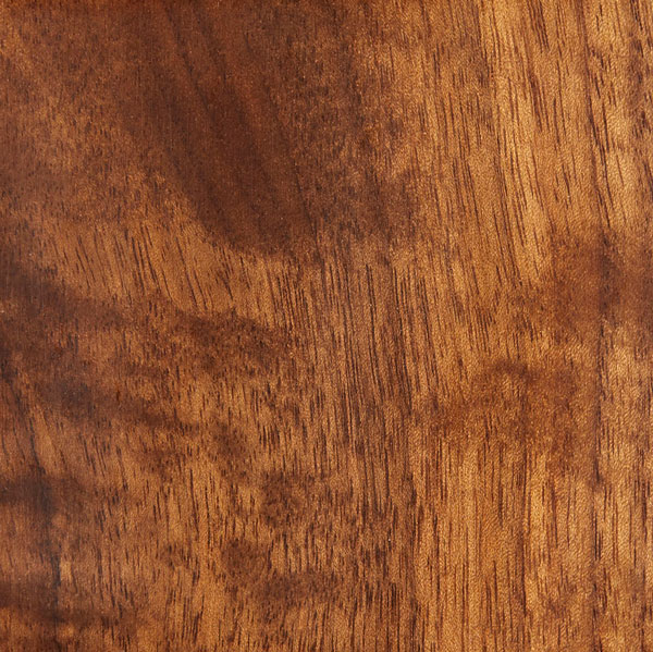 walnut-natural-dye-018